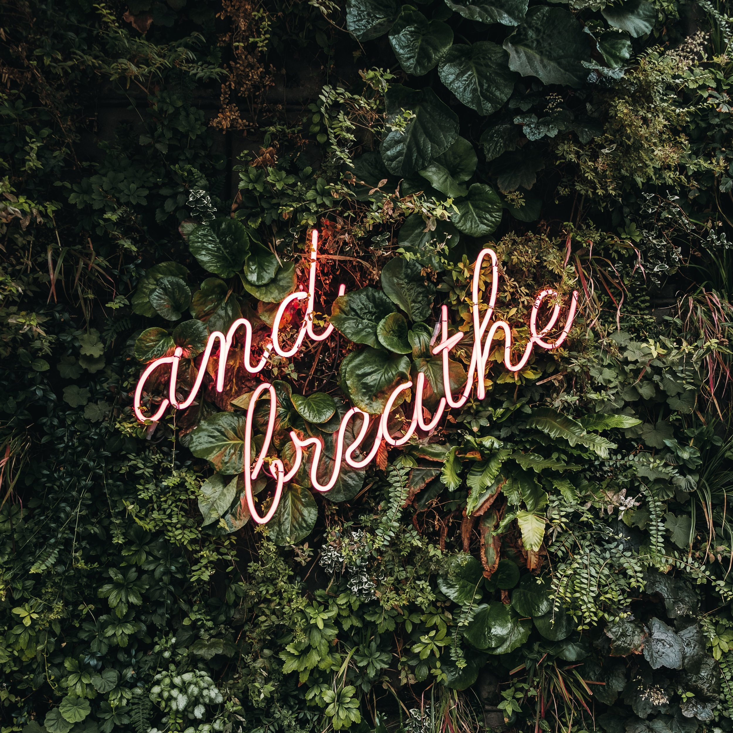 Reclaim YourSense of Self - A Community Breathwork + Sound Healing Class