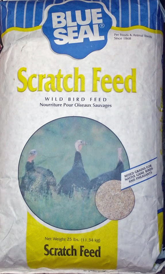 scratch-feed.jpg