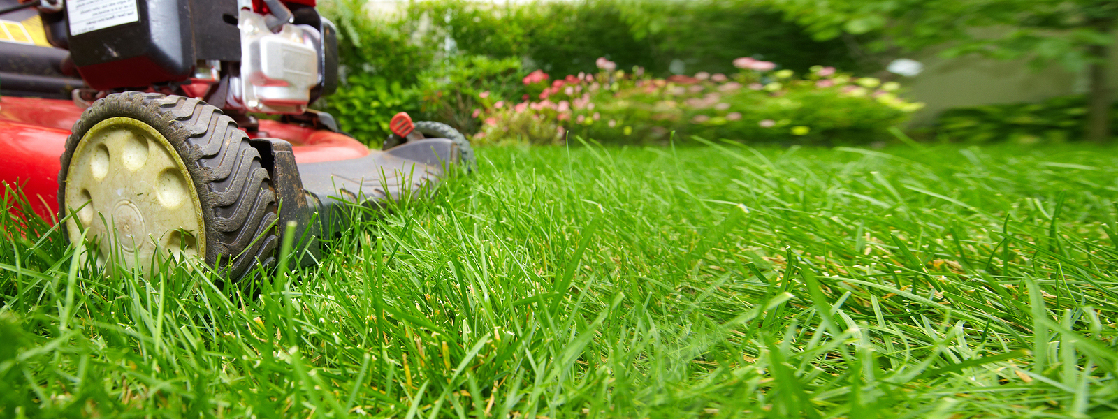 bigstock-Lawn-mower-182258899.jpg