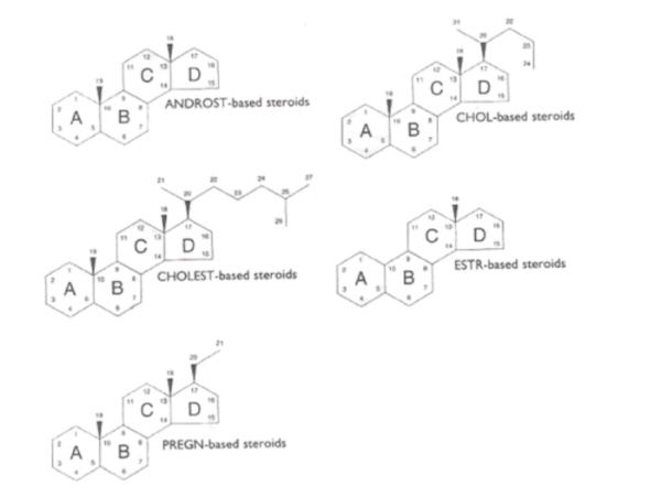 Base Steroids