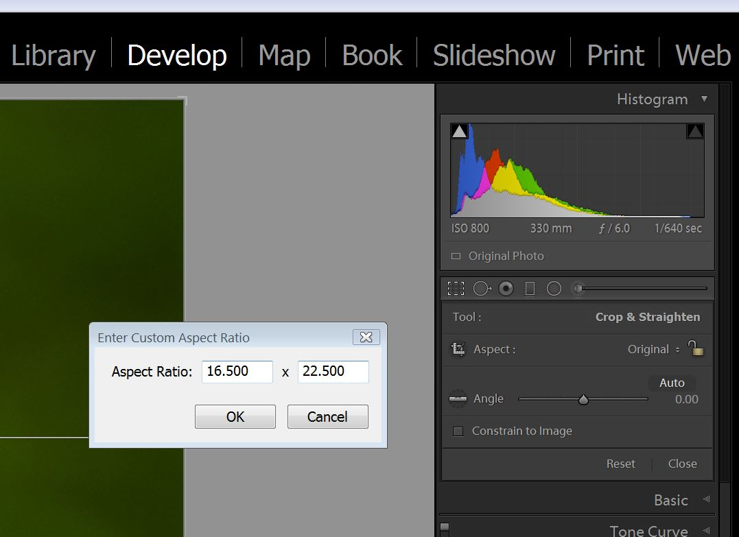 Click Crop and in the drop down select Custom Crop.