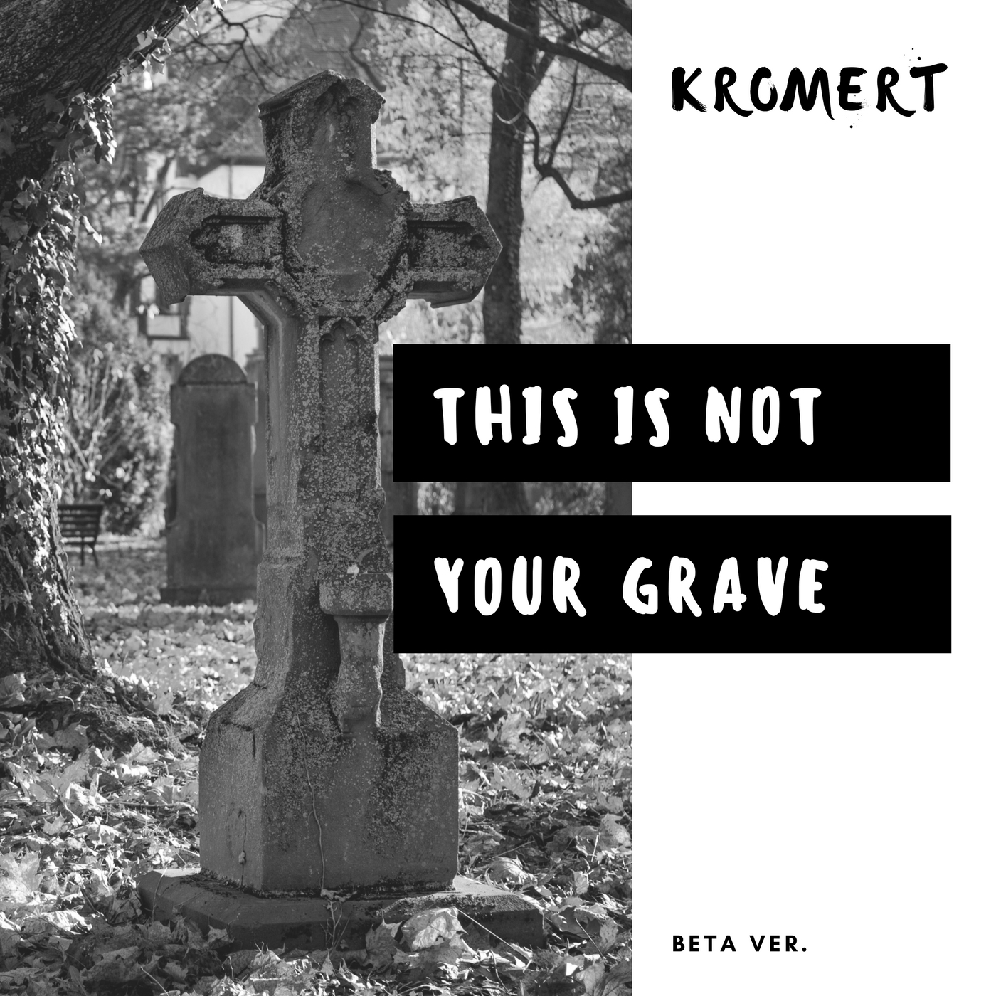 This Is Not Your Grave - Beta Version