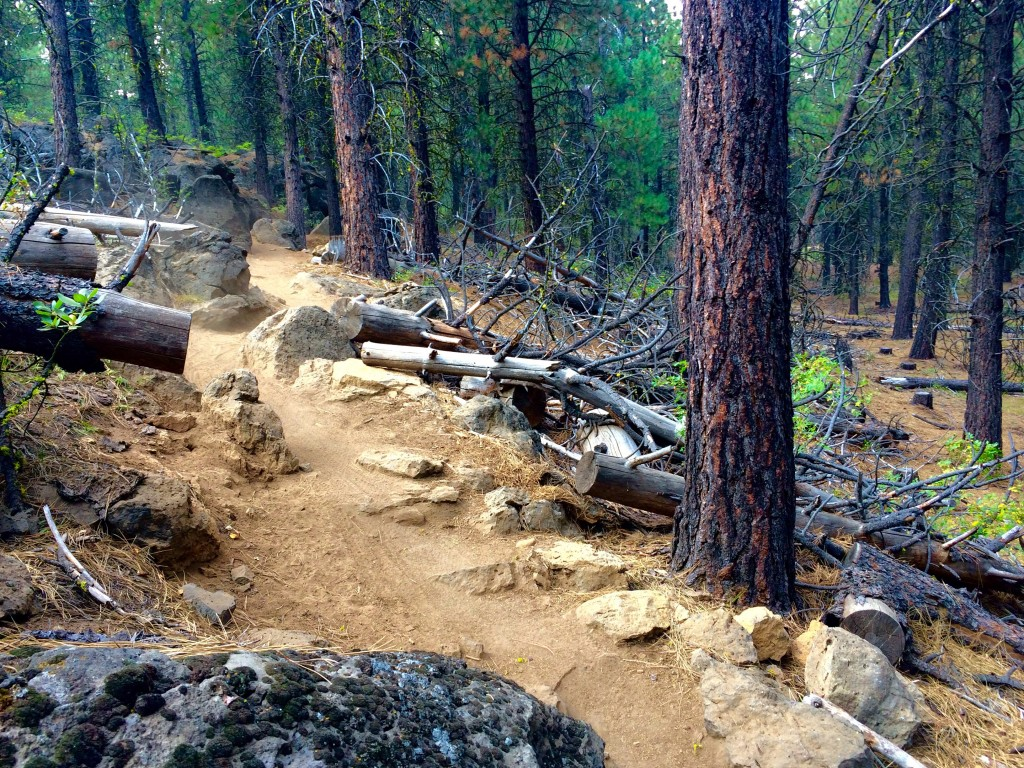 Upper Storm King Trail. Credit: Bend Trails