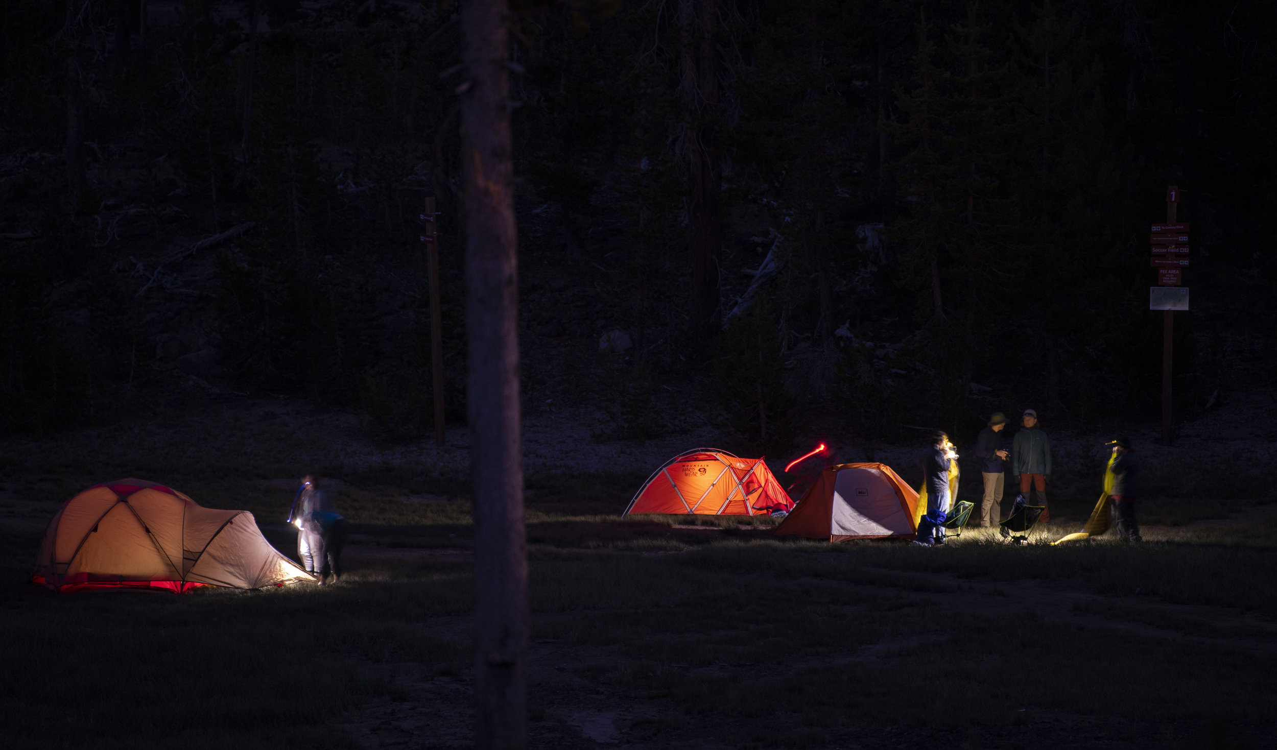 tents @ night.jpg