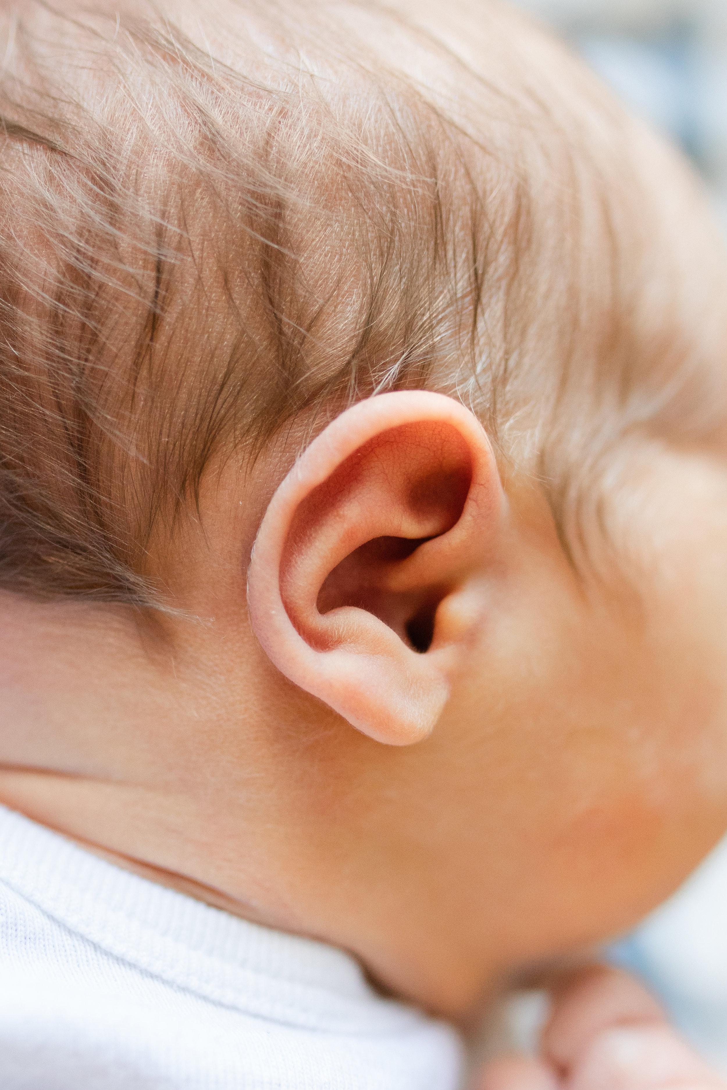 Detail Shot of Newborns Ear