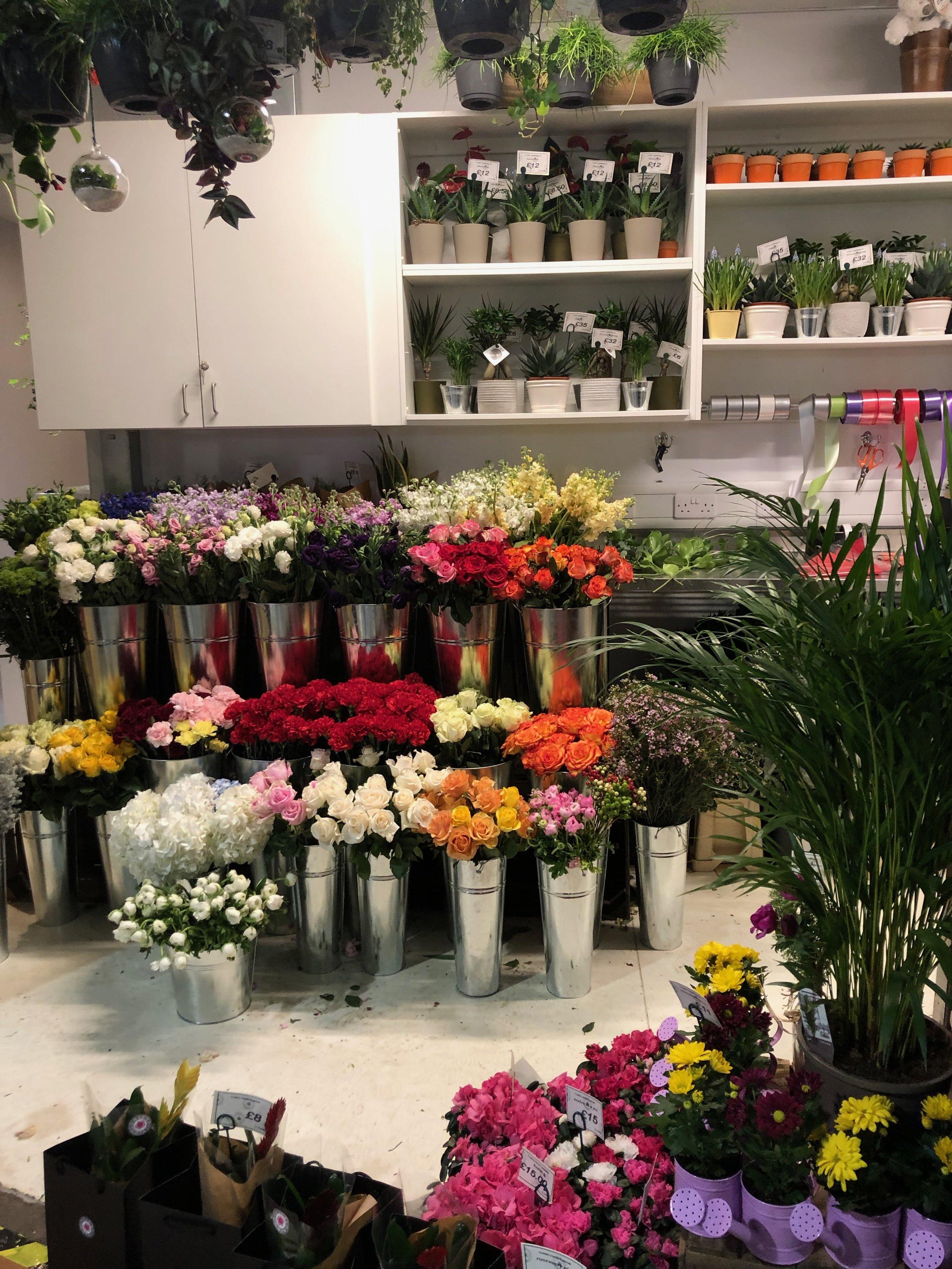 Glasgow Flowers