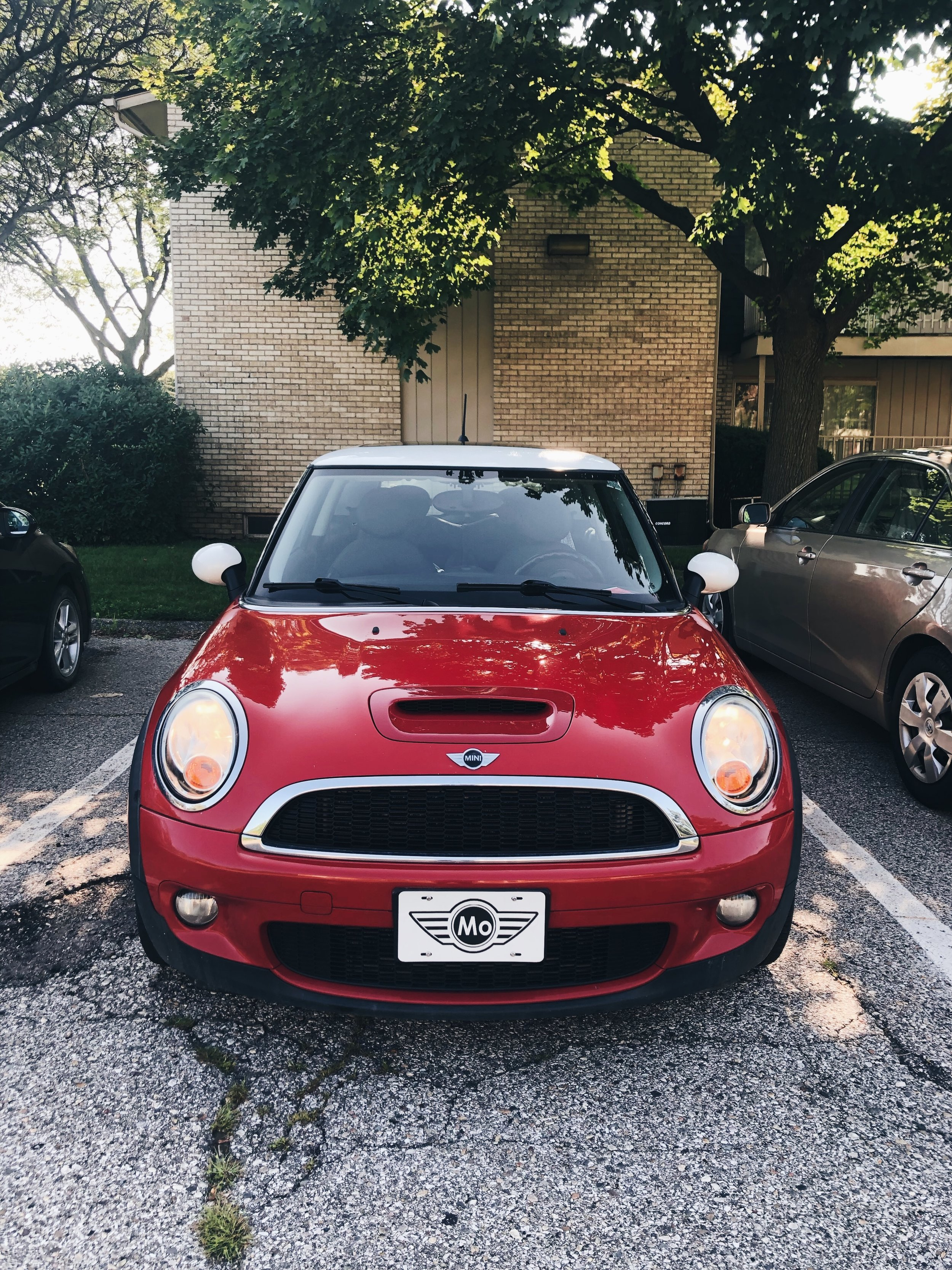 In case you were wondering, My Mini's name is Mo. - Let me know if you'd like to hear more about him and our adventures together in the comments below.