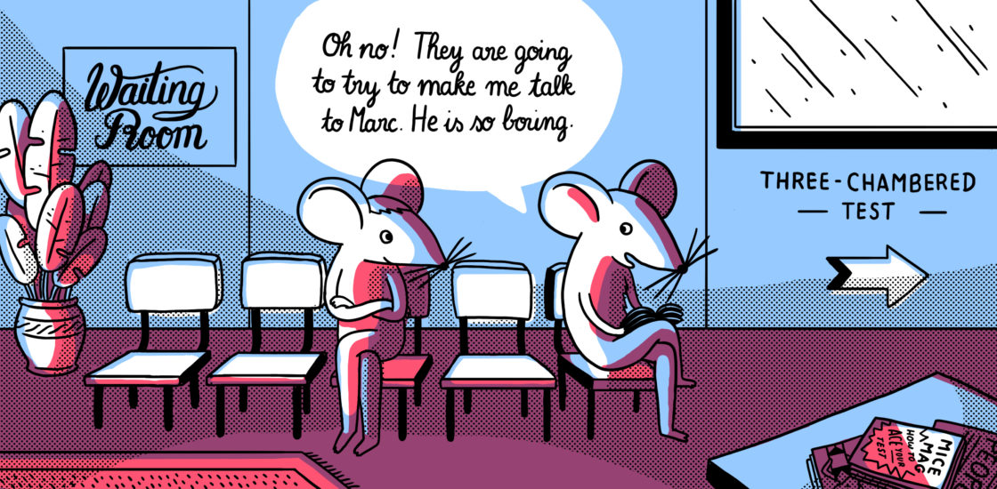 What to watch for when analyzing mouse behavior