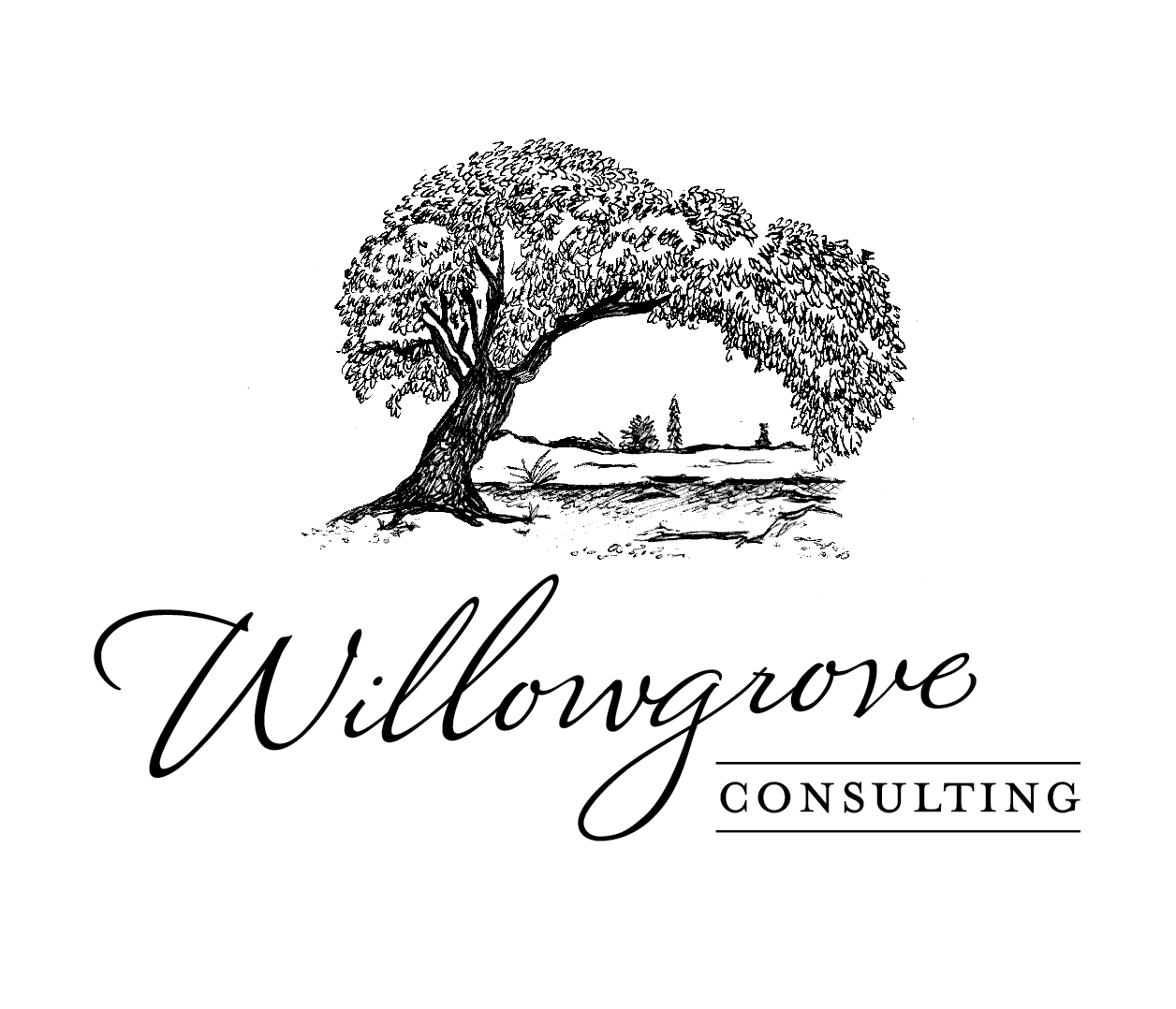 willow grove consulting.jpg