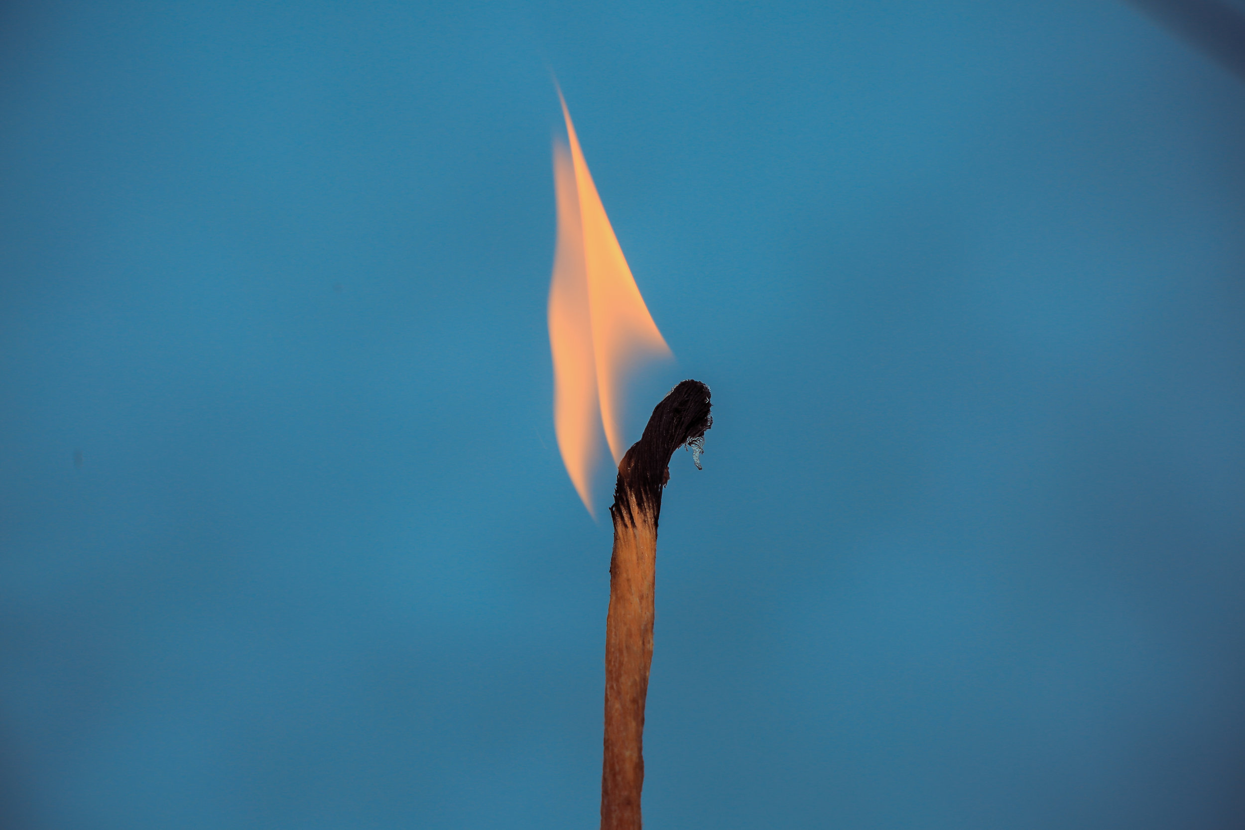 burnt match