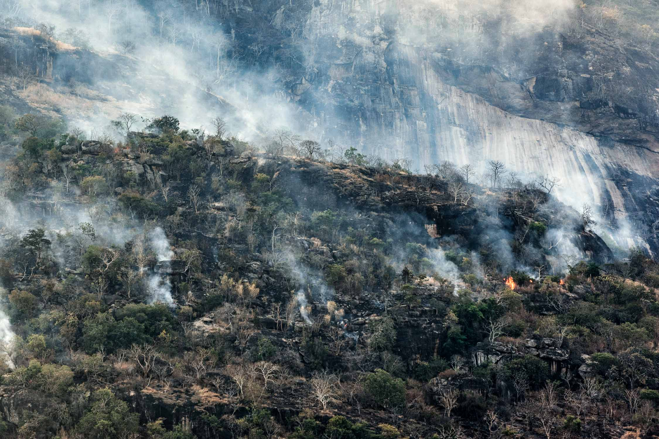 Uncontrolled wildfires in the Selous - Niassa region.
