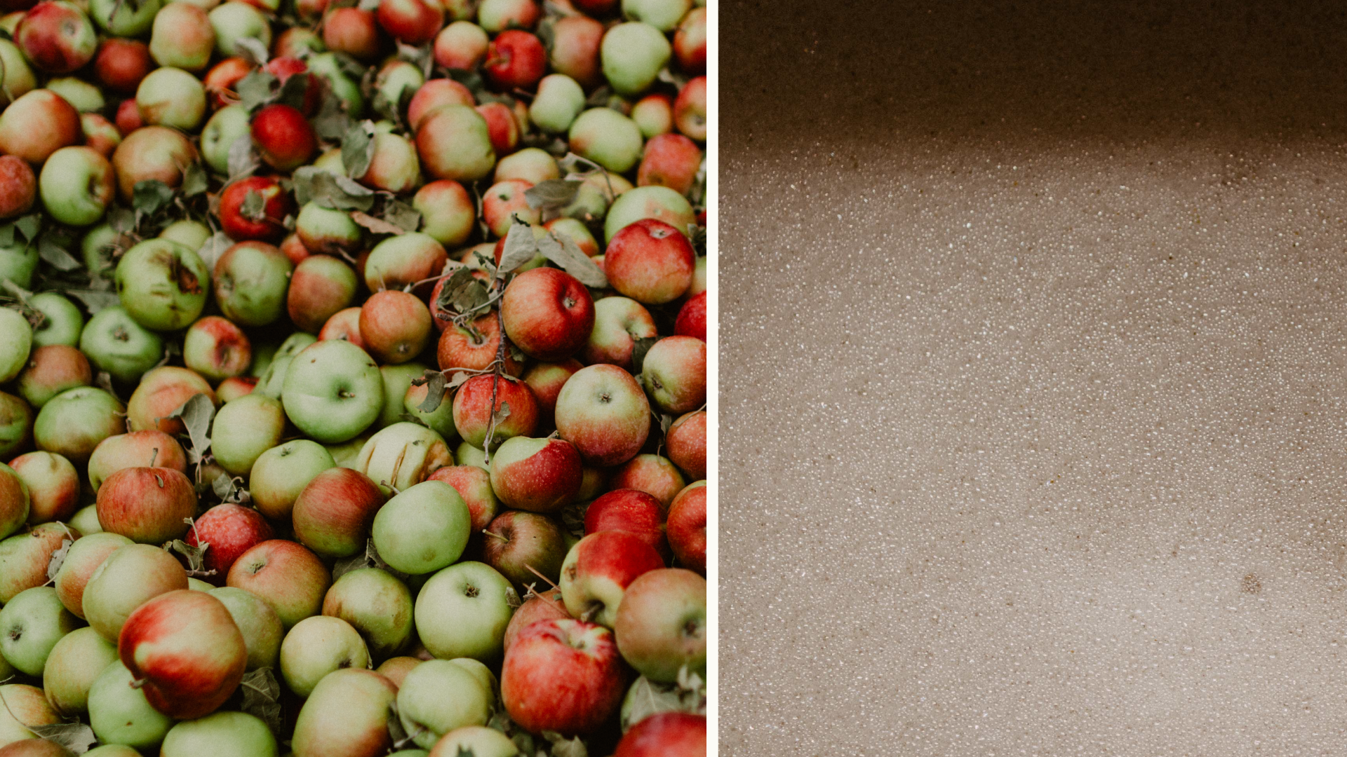 Apples are juiced and slowly fermented in stainless steel tanks.