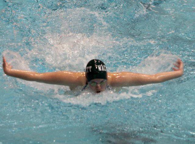 Wachu swim.jpg