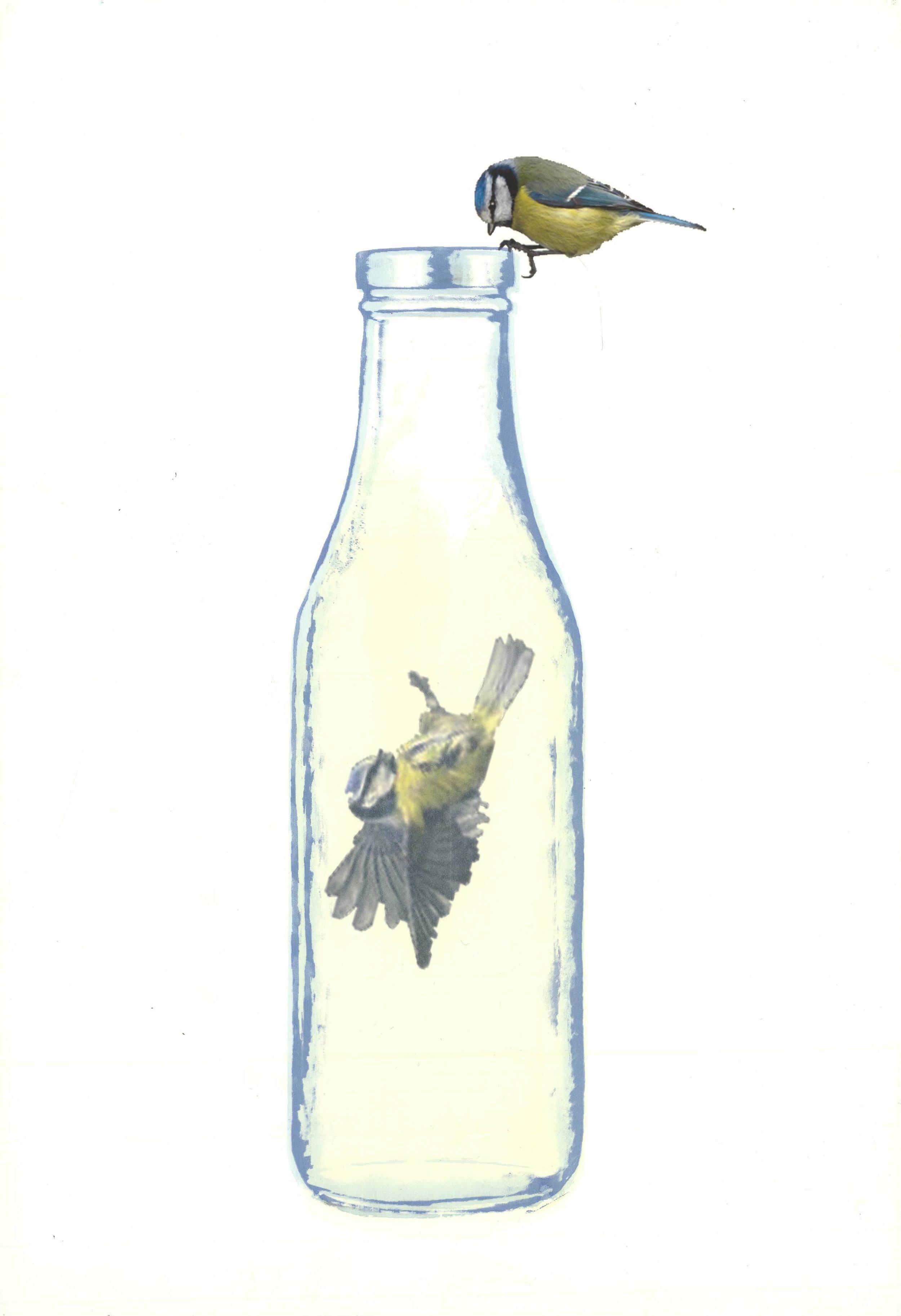Meagan-Hindel-Print-Bird.jpg