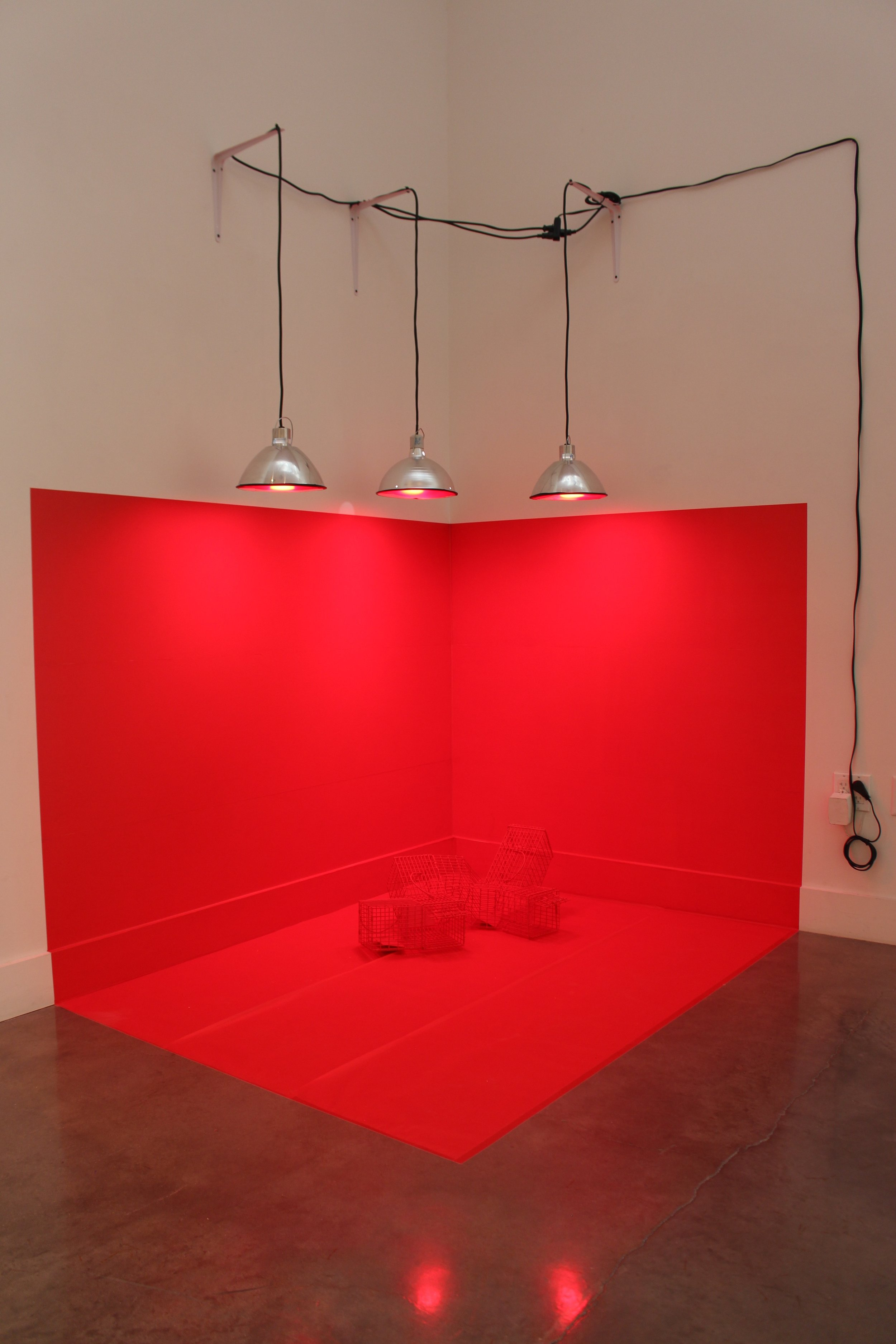 Meagan-Hindel-Sculpture-Cage.jpg
