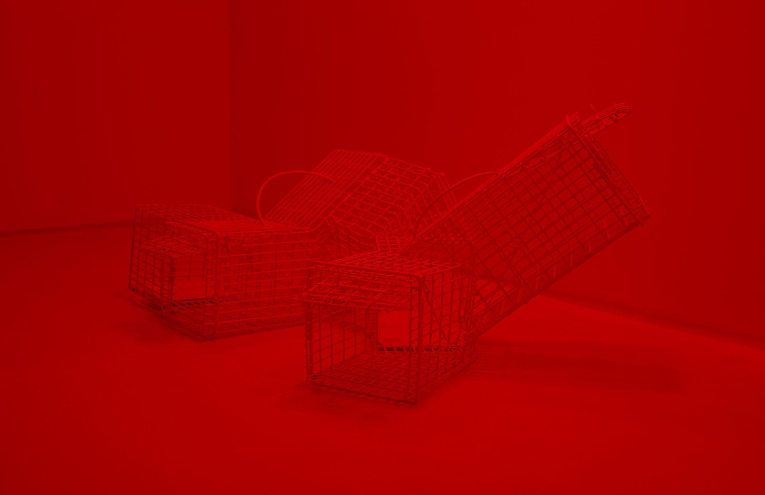 Meagan-Hindel-cage sculpture.jpg