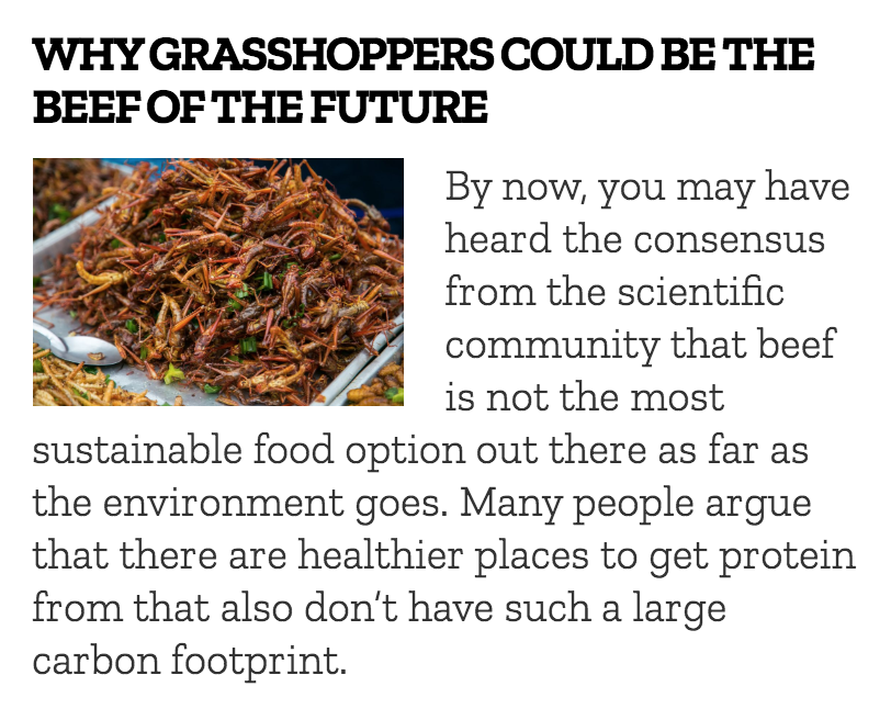 """- """"Why Grasshoppers Could Be the Beef of the Future""""Published on Divvy Magazine"""