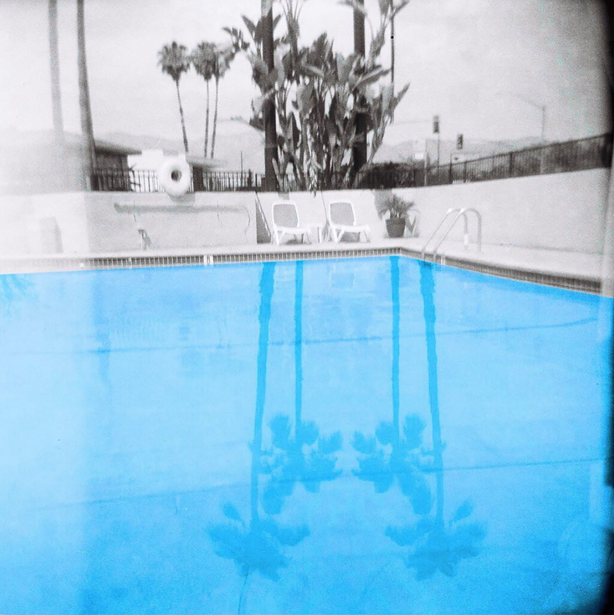 A Photo Series of Palm Trees Shot on 120 Film