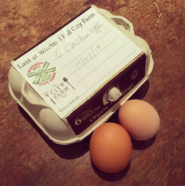 """Fresh eggs from the happy hens at my place of work 💛 eggs are packed full of nutrients including choline, selenium and lutein which is vital for eye health. You may have heard that eggs are high in cholesterol, but they in fact raise HDL or """"good"""" cholesterol which is linked to a reduced of heart disease 🥚 #fresheggs #hearthealthy #nutrition #bristolnutritionist #shoplocal"""