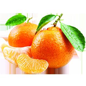 mandarini-1.png