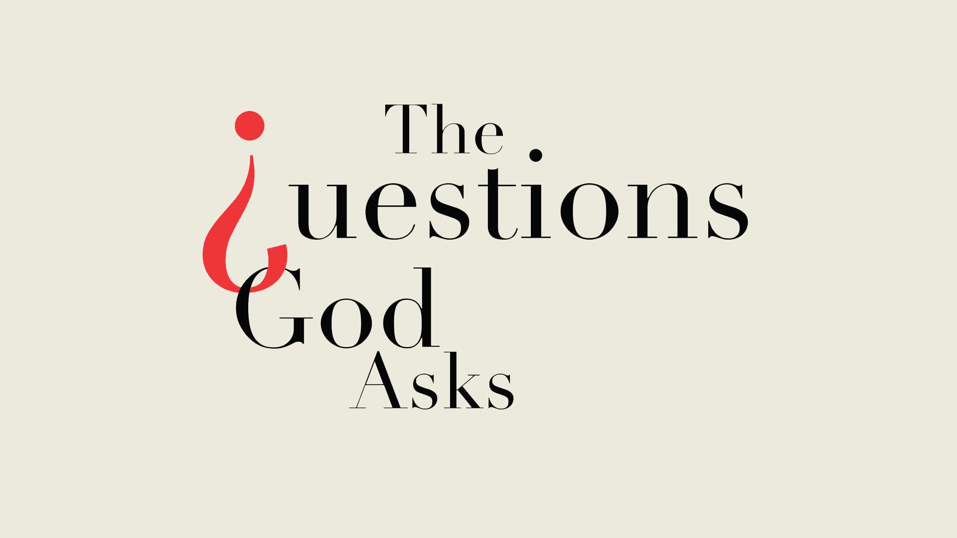 Questions God Asks.jpg
