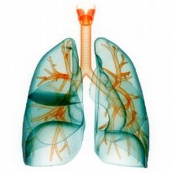 Breath Healing -