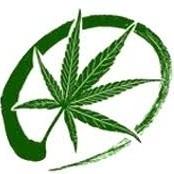 International Cannabinoid Research Society