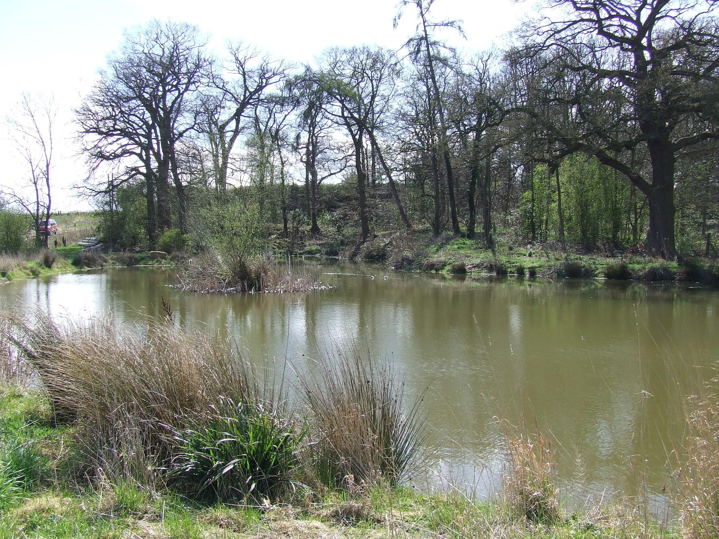 Pheasant Lake.JPG
