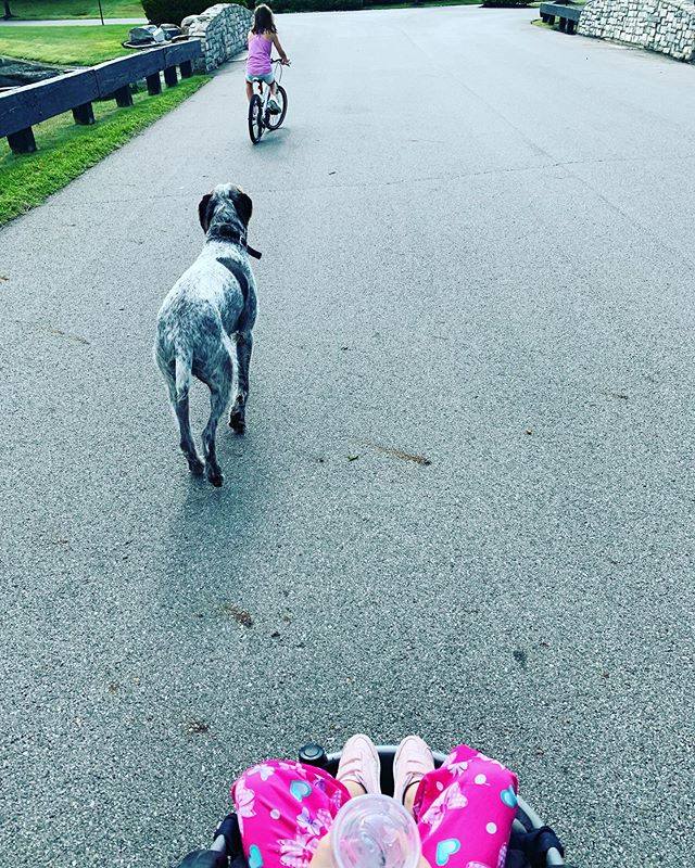 On the go with JoJo (not yet doggie approved) 🐶 . . #morningwalk #workoutwednesday #getoutside #cutedogs #cutekids #hydrate #jojocups #thrillsnotspills