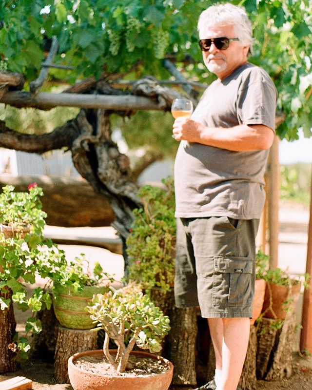 this is humberto toscano. he is the proprietor of #lacasavieja in san antonio de las minas, #baja, #mexico🇲🇽 . it's a small, elevated, valley that's 5 miles as the crow flies from the pacific ocean. he's standing in front of the mother vine 🍇 of 150 year old #mission. in his hand is an 🍊 wine with 120 year old #palomino & #muscat.  his father bought the estate in the mid 50's. humberto, 'Tito' tends these heirloom vines and makes wine with the knowledge of the old time mexican farmers and passed down knowledge on making from local farm hands. ☝🏽 click link to watch a #borderlesswine conversation with@humberto and @peterweltman  soon in washington, d.c., followed by #nyc & #california  @borderlesswine x @terrasancta_wine_beer_arak
