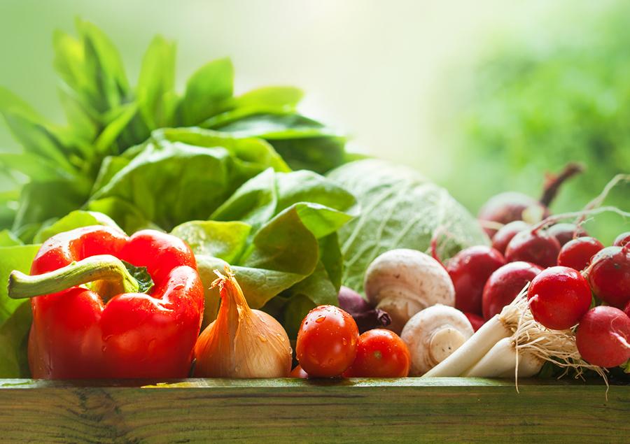vegetables-spring.jpg