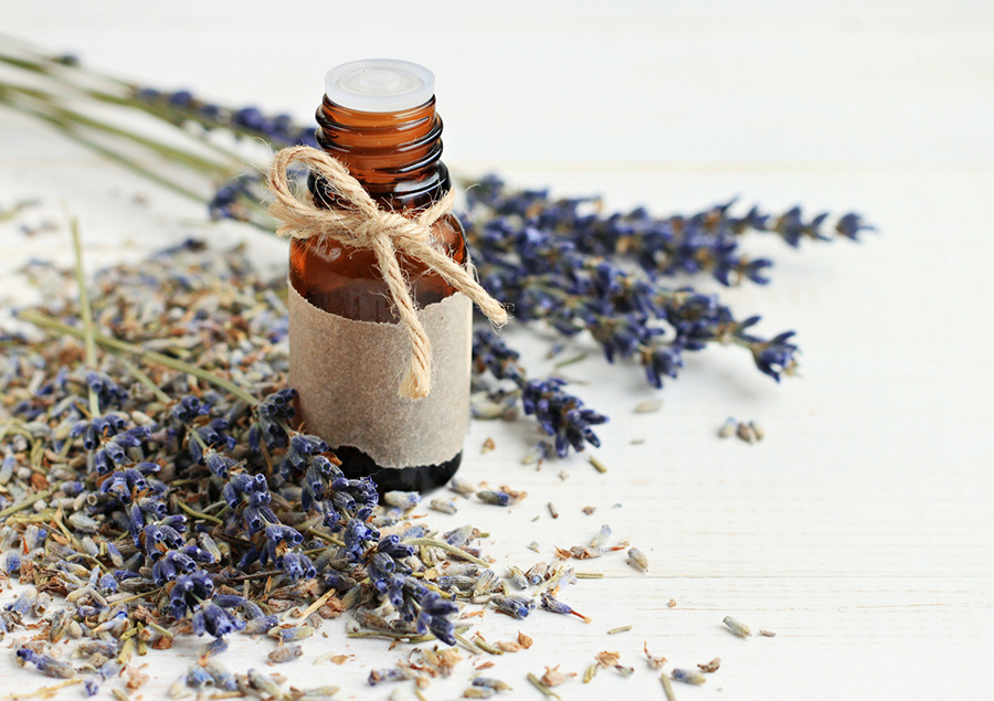 lavender-essential-oil (1).jpg