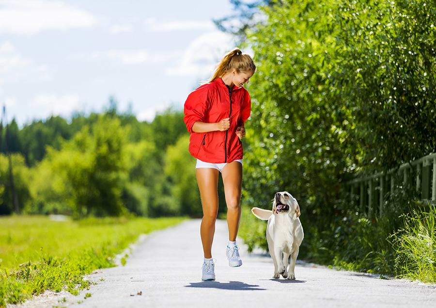 dog-exercise.jpg