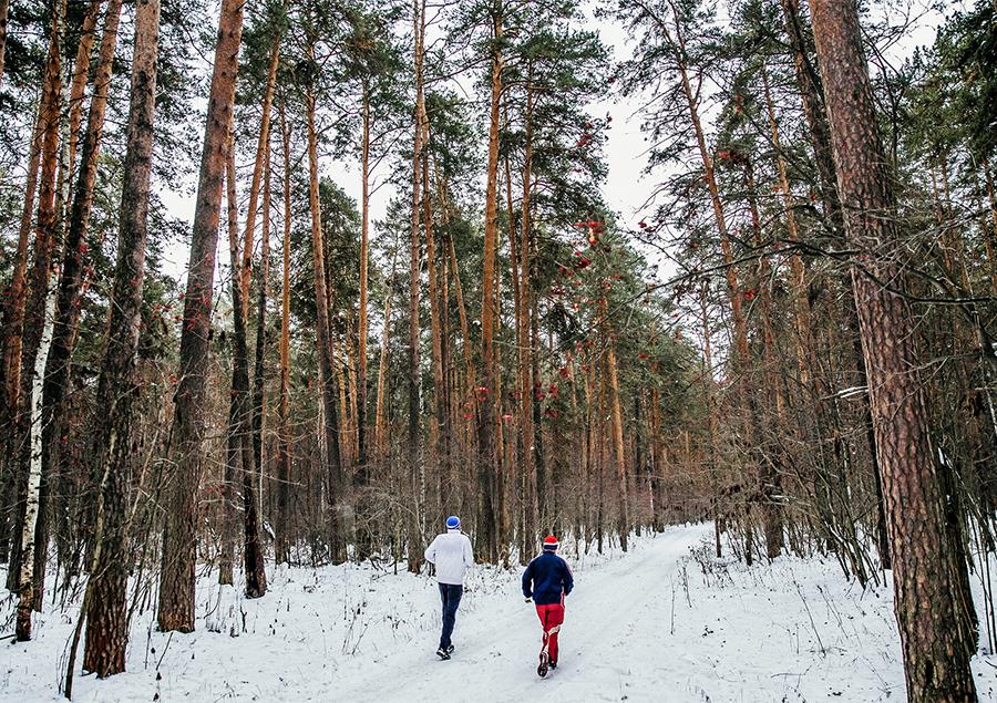 winter-exercise-in-woods.jpg