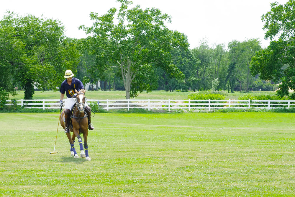Kensington Estates Woodbury - Woodbury - Polo.jpg