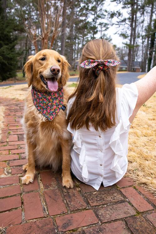 face covering or scrunchie Spring floral slide on dog bandana