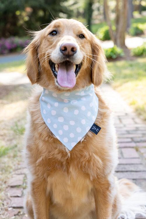 blue dog bandana geometric dog bandana Boho dog bandana dog bandanna