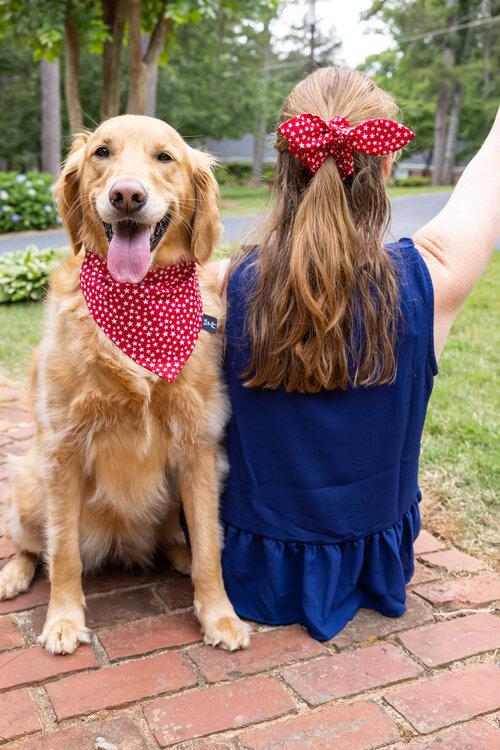 Double Sided Slip on Bandana Scrunchie. Dog Bandana with Matching Scrunchie Rainbow Over the Collar Dog Bandana