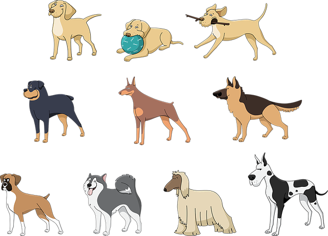 collage animated dog breeds.png