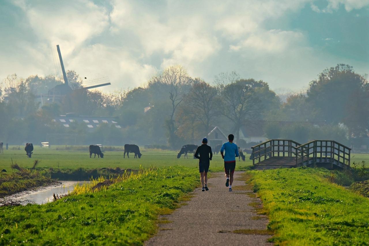 people running windmill near field.jpg
