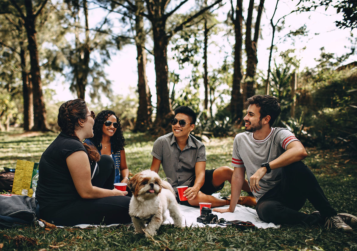 friends picnic chatting with dog.jpg