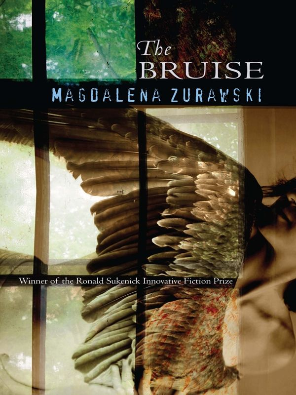THE BRUISE    Winner of Ronald Sukenick Prize for Innovative Fiction  ISBN: 978-1-5736614-4-7 $16.95 • 2008 • 174 pages  Fiction Collective 2 (FC2)