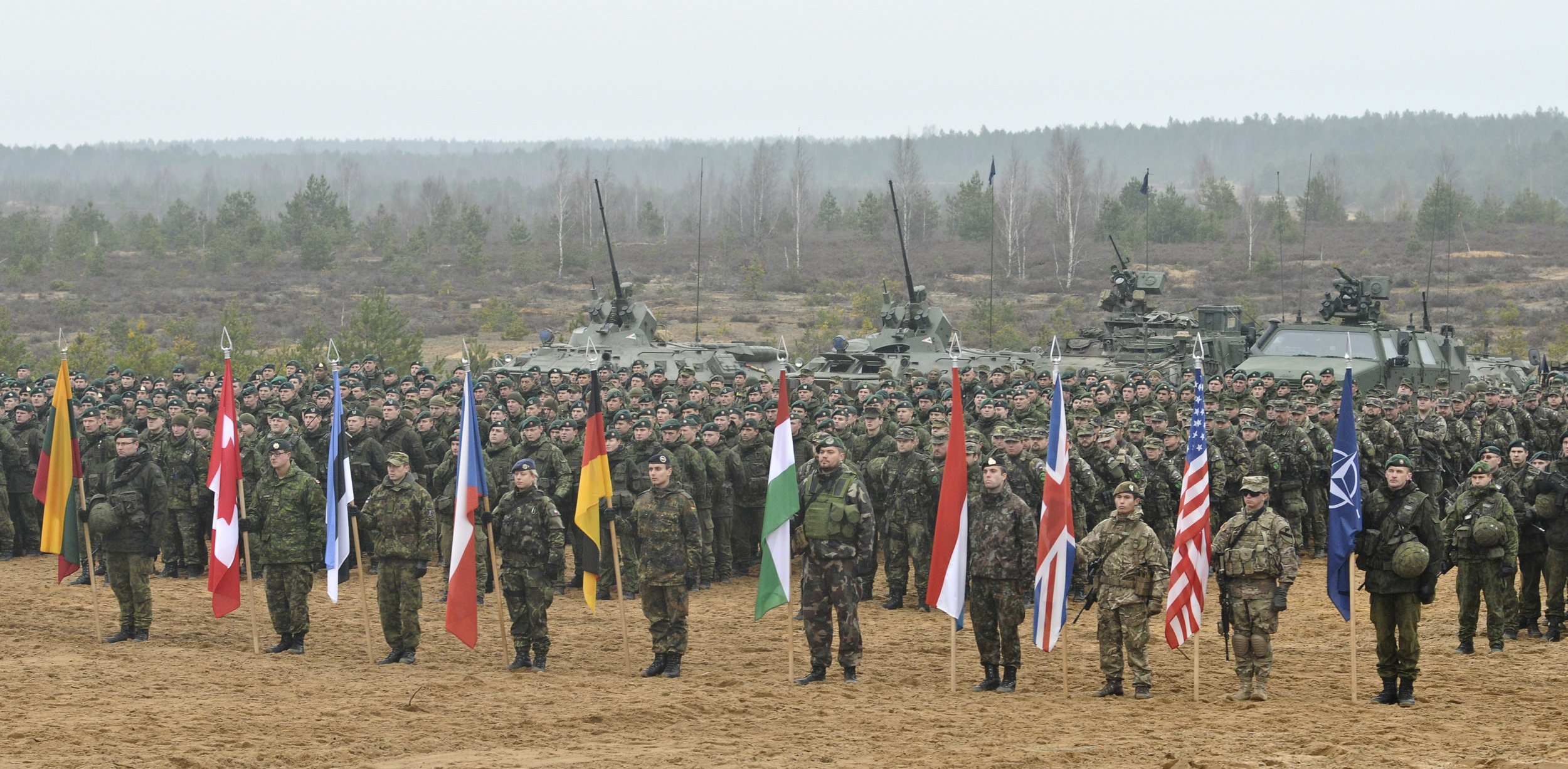 Soldiers of 9 nations pictured at the closing ceremonies of the Iron Sword 2014 exercise hosted by Lithuania, a sign of the country's continuing improvement of its material and cyber defenses. (Wikimedia Commons)