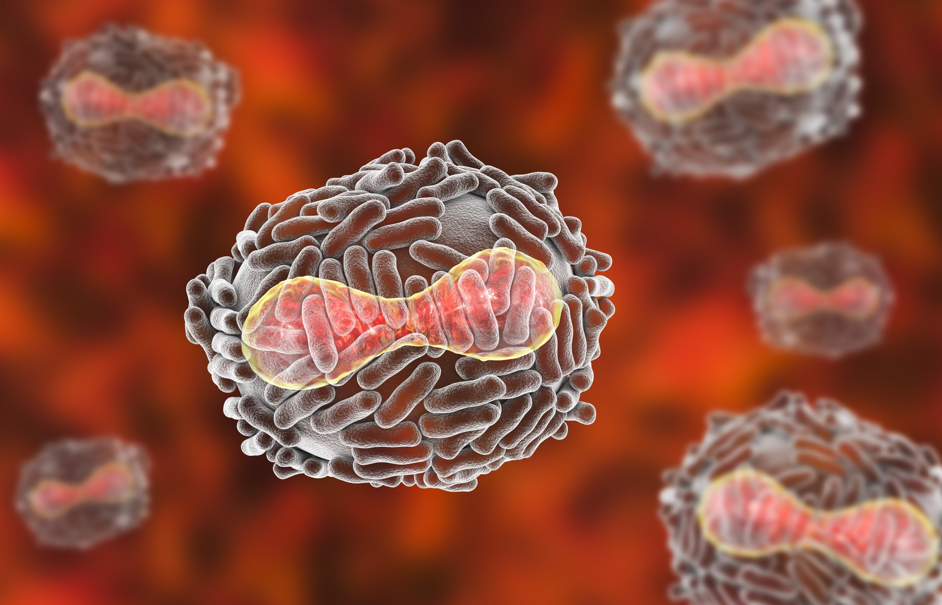 The biolaboratory where the explosion occurred houses one of only two remaining smallpox samples in the world. (Live Science)