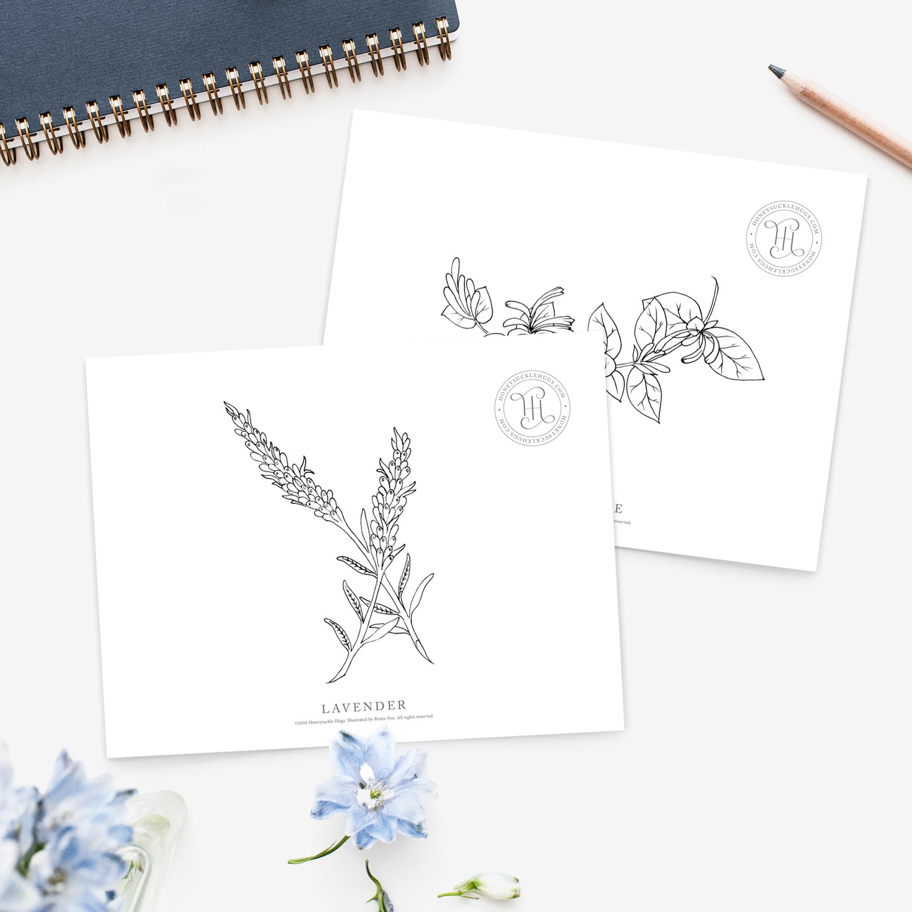 Honeysuckle-Hugs-coloring-pages.jpg