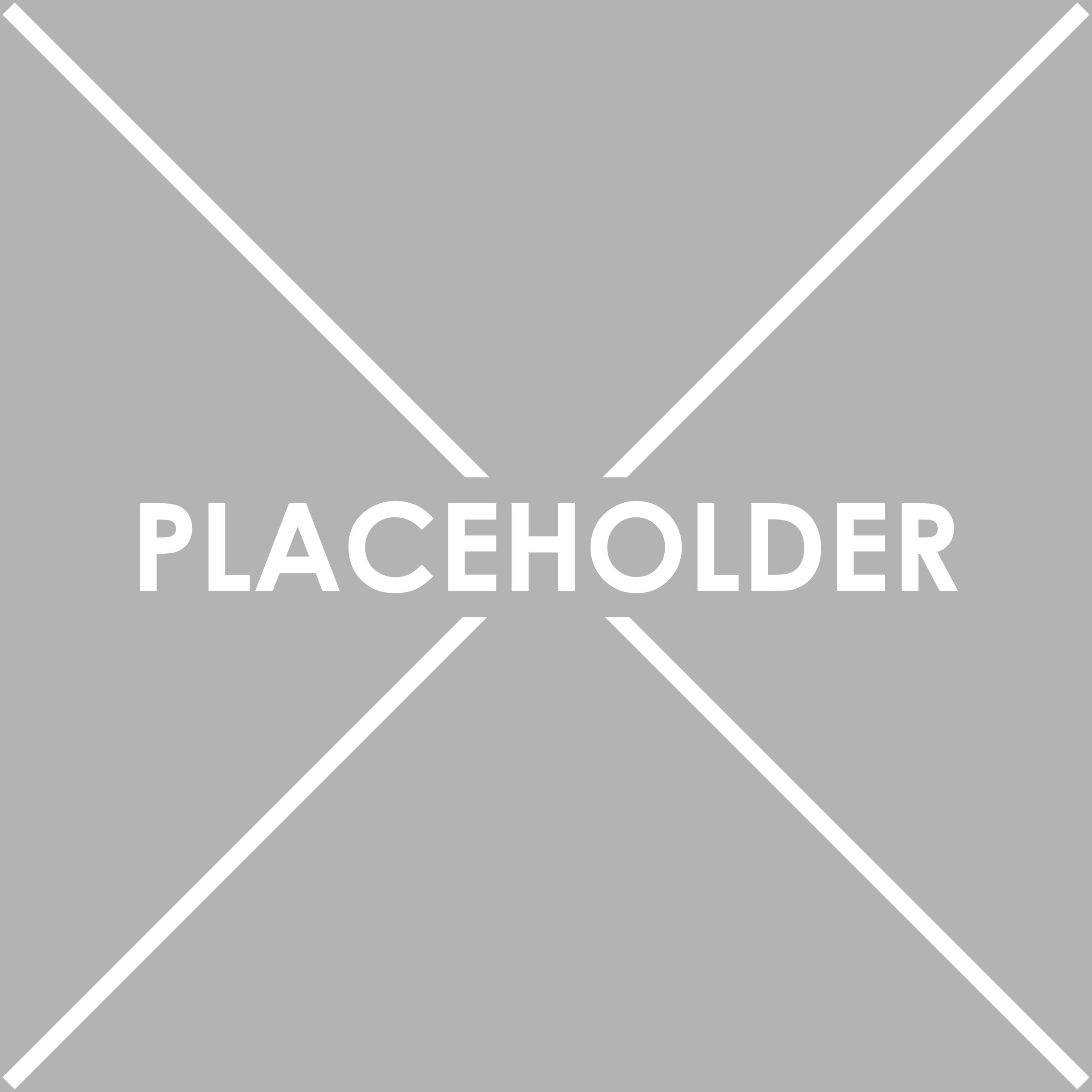 Placeholder copy 3.png