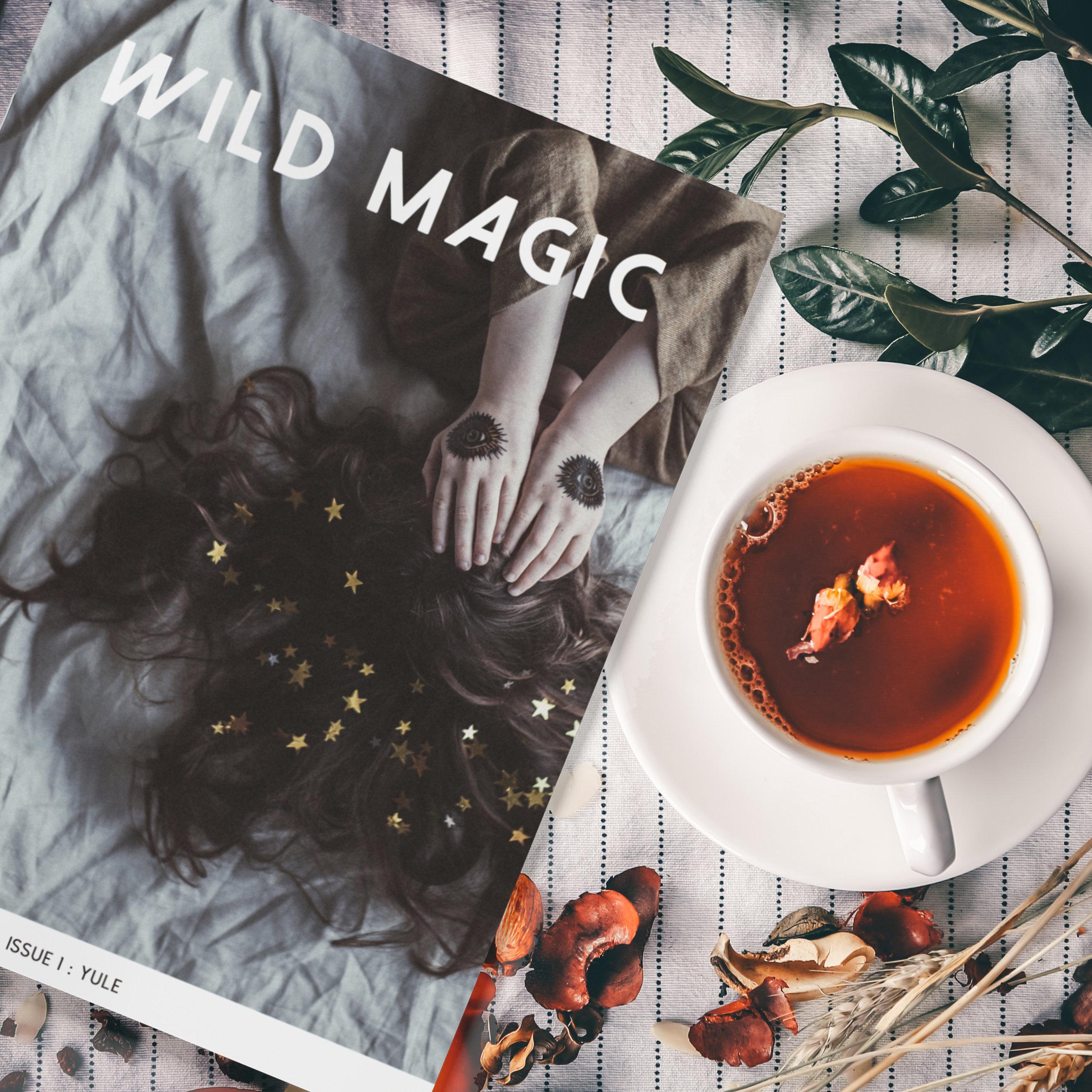 wildmagic_magazine2.jpg