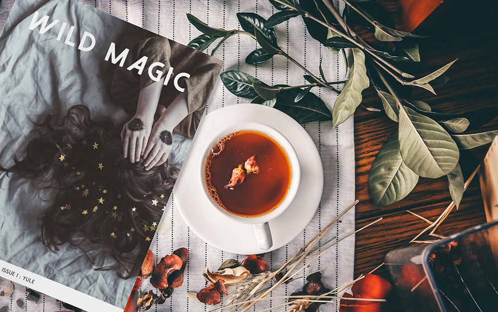 wildmagic_magazine_SM.jpg