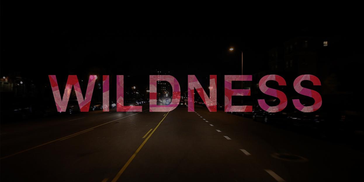 1_wild.jpg