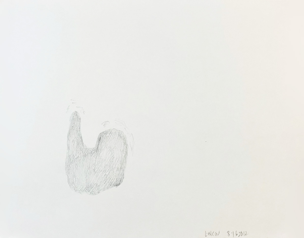 "Drawing 9, 2012, 8"" x 10"", pencil on paper"